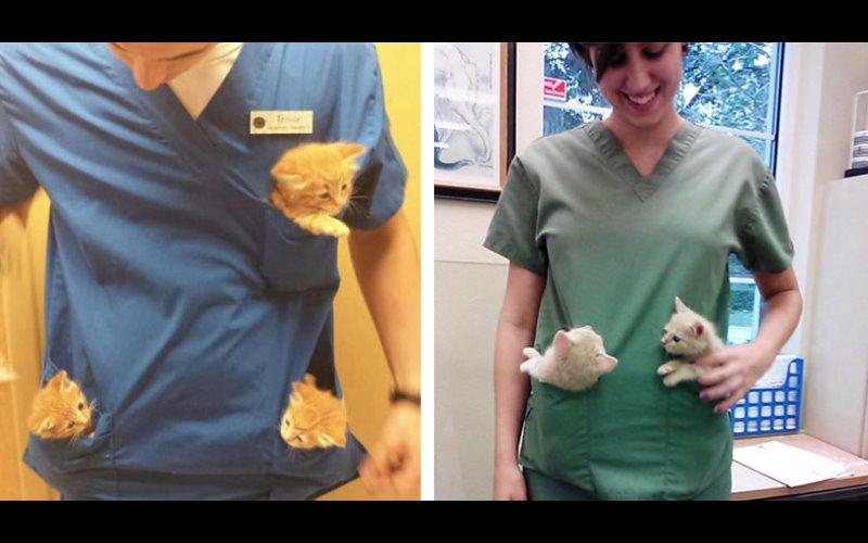 看完這31張超萌的照片你就知道為什麼「獸醫是全宇宙最幸福的夢幻職業」!  -