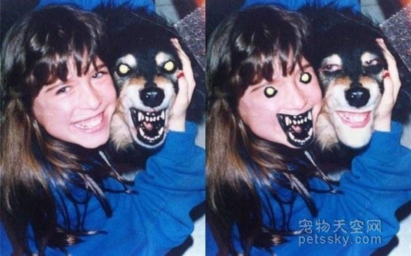 15張主人與寵物面部表情互換的圖片,各種奇妙、驚悚、無違和XD  -