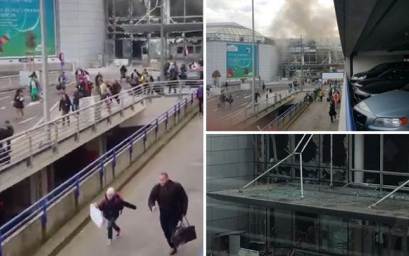 最新實況!布魯塞爾機場驚傳爆炸,死傷持續暴增,目前已17死數十傷!  -