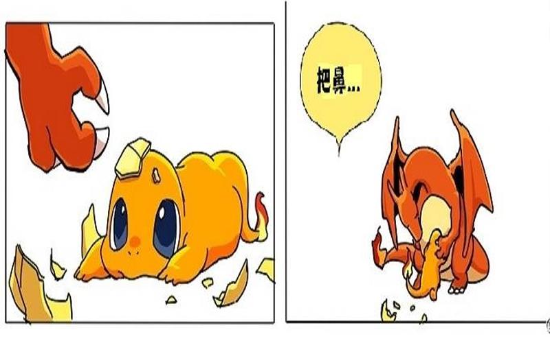 這個寶可夢漫畫裡有洋蔥!小火龍的成長故事結局超催淚,沒想到他的爸爸並不是噴火龍而是...