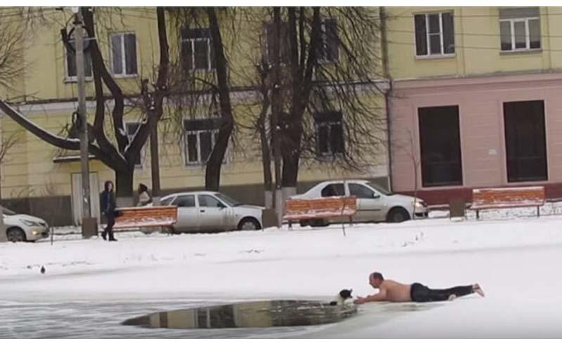 大叔為了救跌進結冰池塘的狗狗,被咬到手破血狂流也要救起牠!網友大讚他是英雄!