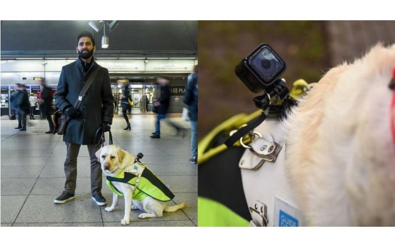 他察覺自己的導盲犬「常常感到害怕」…在牠背上裝GoPro後竟發現這「讓人心寒」的真相!