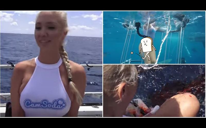 果然好吃?美國AV女優下海拍攝竟慘遭鯊魚狠咬當場濺血!這畫面太嚇人(圖+影)