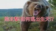 有熊出沒!!!大家快逃啊!怎麼還有人敢靠近這個大「怪物」呢? 這位老兄希望路人幫他拍照,選好地點~ 不過他似乎沒有注意到身後不遠處有一樣東西~ 沒錯!那隻大怪物突然起身要追殺他了! 這隻熊已經嚇到了很多路人(包括小狗狗) 居然還跑到路上去嚇人~被警察叔叔發現了,順手拿起地上的雪球向牠扔去,結果搞笑的一幕發生了! ▼最後警察叔叔對熊熊做了什麼?快來看影片吧! 這是最近一齣很紅的惡作劇「熊攻擊」哦,大怪物是人扮演的XD~有熊出沒!千萬注意安全哦XD ▼「熊攻擊」拍攝花絮~